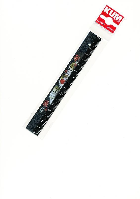 """Иллюстрация 1 из 2 для Линейка 17 см """"INK TB INK"""" (K-L1)   Лабиринт - канцтовы. Источник: радуга-дуга"""