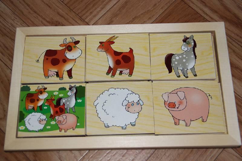 Иллюстрация 1 из 4 для Игра на внимание: Животные (Д-304) | Лабиринт - игрушки. Источник: Vilvarin  laurea