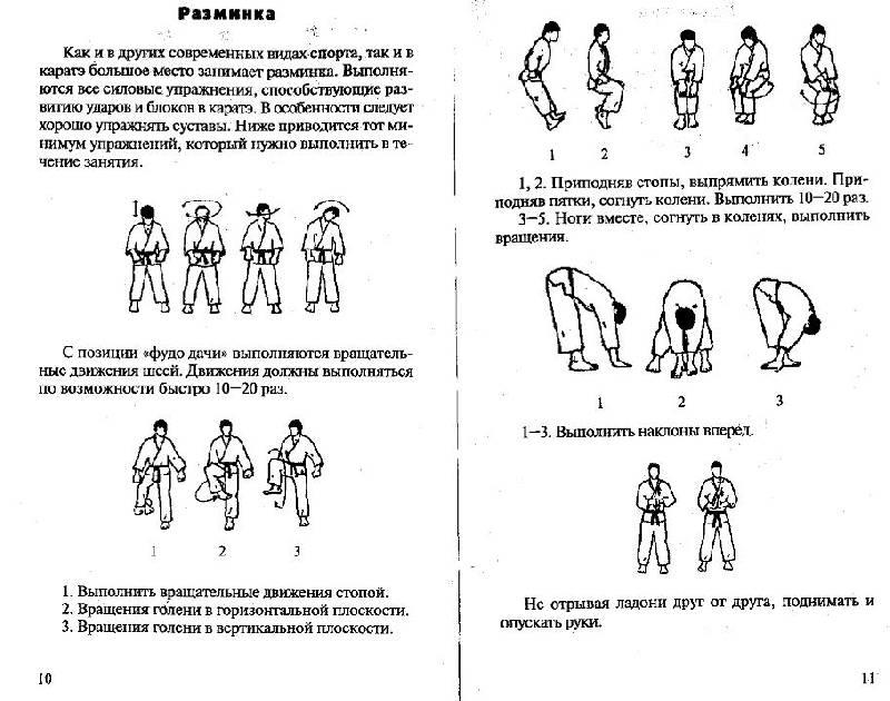 Иллюстрация 1 из 7 для Каратэ Киокушинкай: Самоучитель - Мисак Мисакян | Лабиринт - книги. Источник: Рыженький