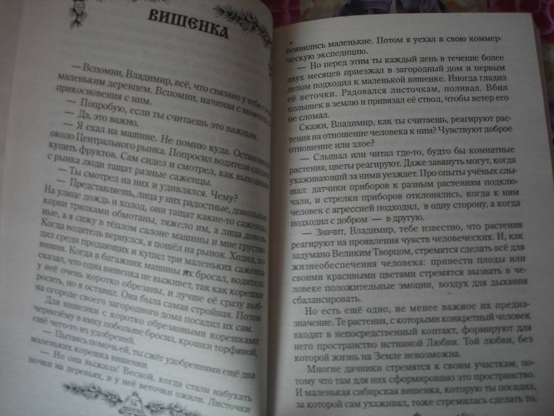 Иллюстрация 1 из 8 для Звенящие кедры России - Владимир Мегре | Лабиринт - книги. Источник: Светлица