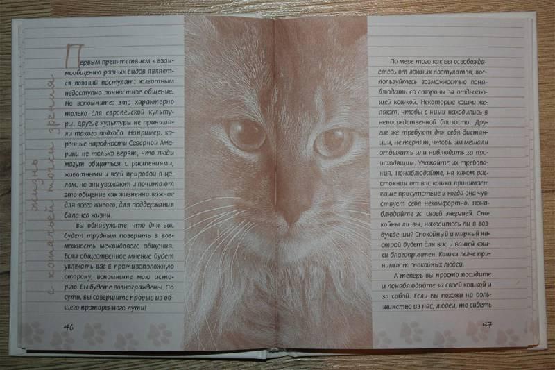 Иллюстрация 1 из 7 для Задушевные разговоры с кошками и котами. Диалоги о кошачьей мудрости - Кейт Солисти-Мэттлон | Лабиринт - книги. Источник: Крюкова  Светлана