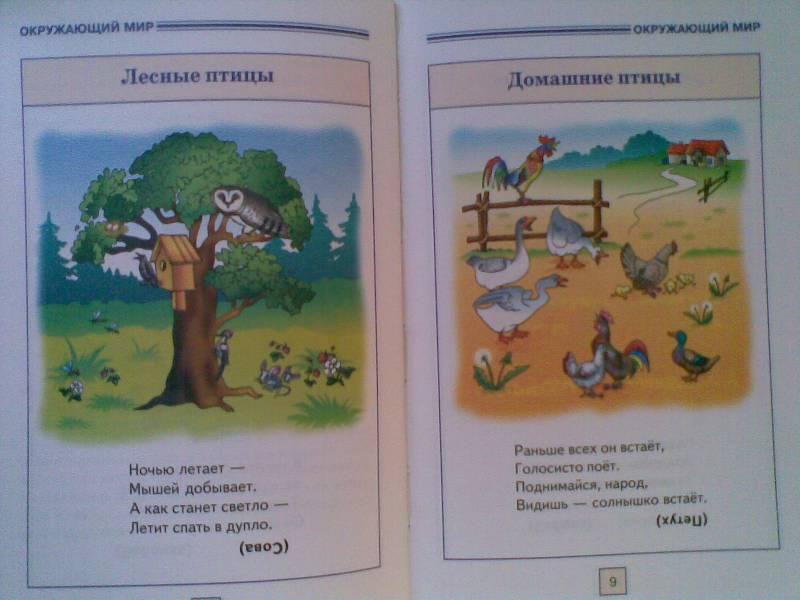 Иллюстрация 1 из 24 для Развитие речи. От 2-х до 5-ти   Лабиринт - книги. Источник: Мельникова  Светлана Сергеевна
