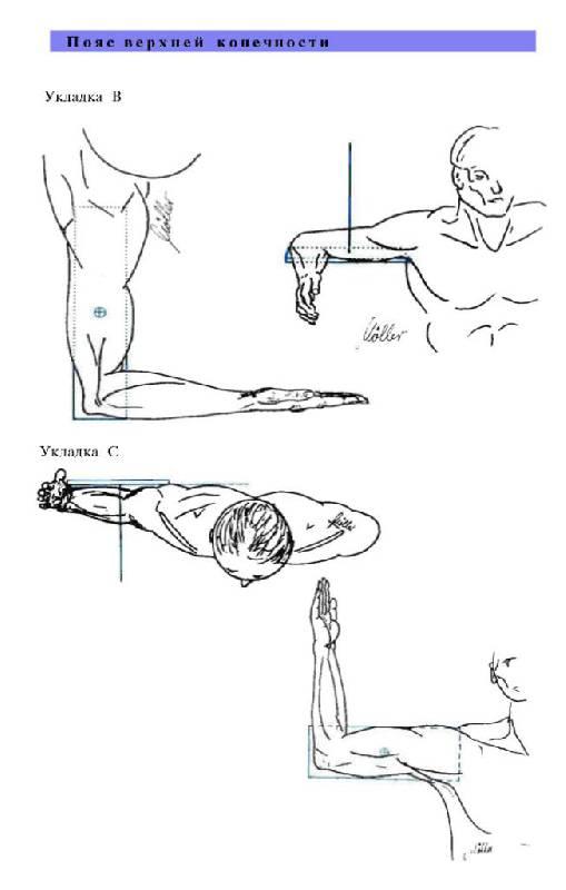 Иллюстрация 29 из 29 для Атлас рентгенологических укладок - Меллер, Райф | Лабиринт - книги. Источник: Юта