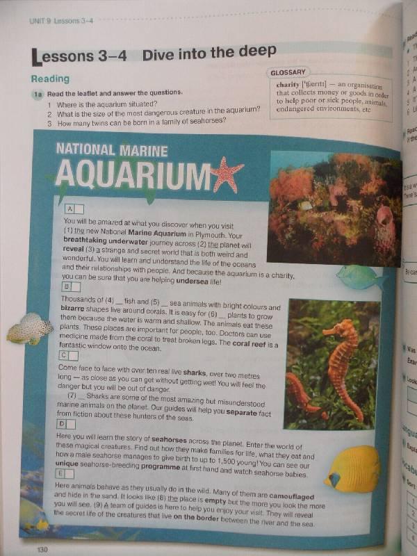 Учебник по английскому языку 8 класс дворецкая.