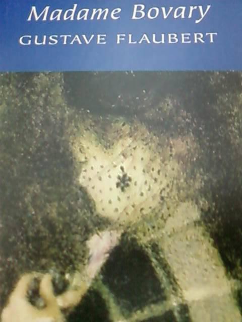Иллюстрация 1 из 3 для Madame Bovary - Gustave Flaubert | Лабиринт - книги. Источник: lettrice