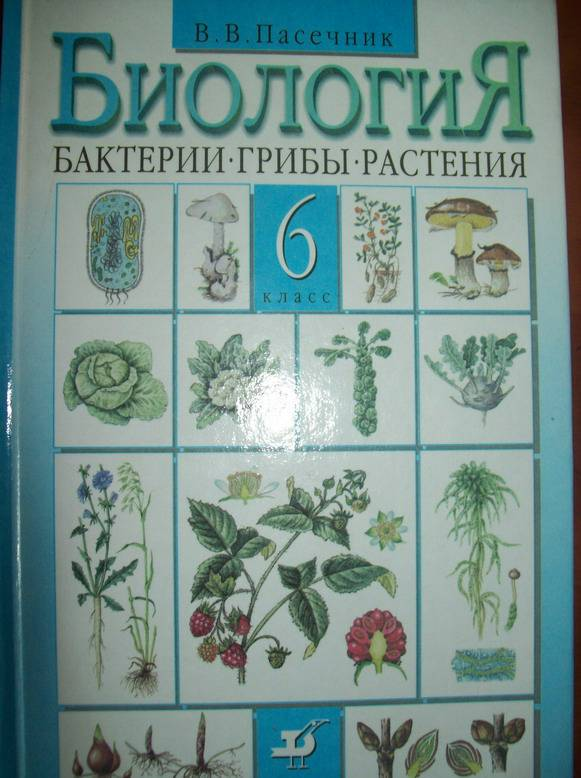 Учебник класс биология гдз пасечник 6