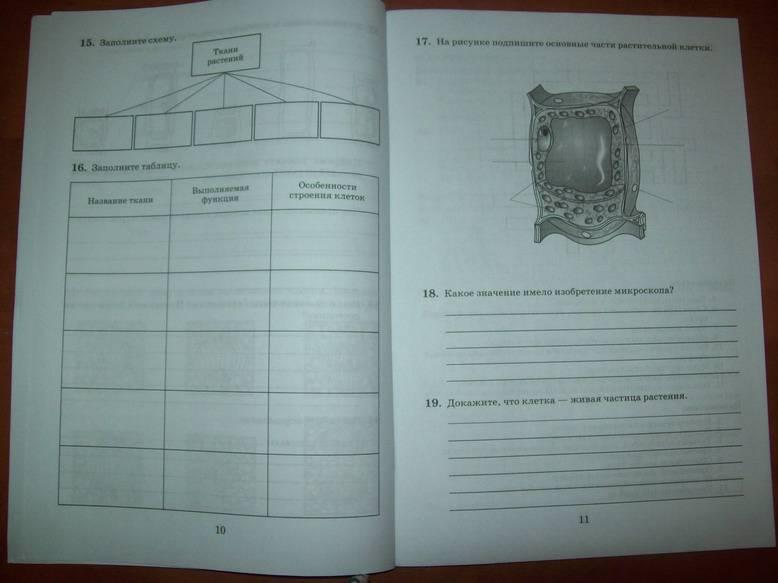 биологически 6класс рабочая тетрадь пасечник снисаренко