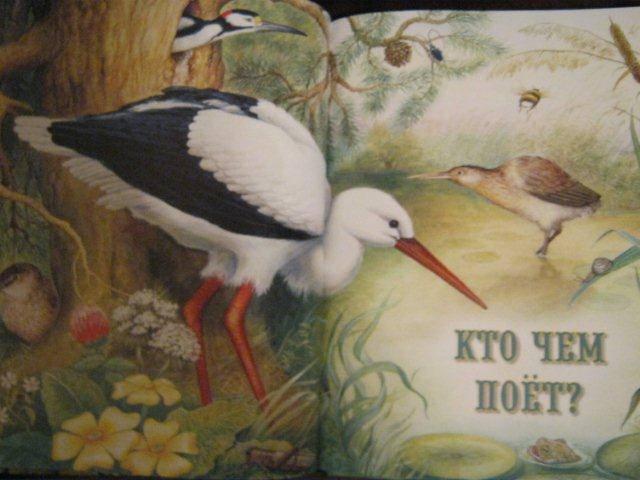 Виталий бианки музыкальная канарейка