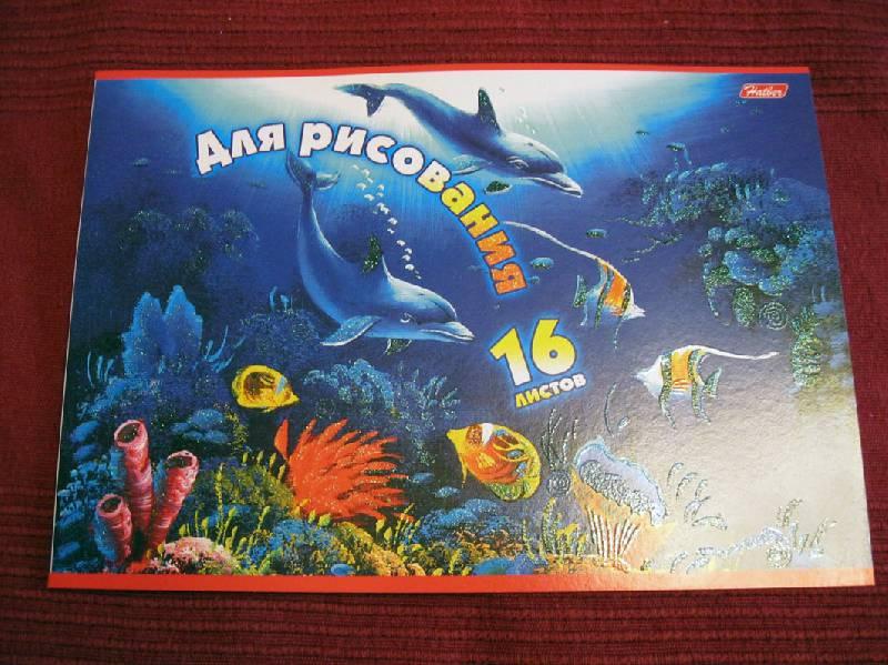 Иллюстрация 1 из 2 для Альбом для рисования 16 листов Дельфины (16А4блВ) | Лабиринт - канцтовы. Источник: Avril
