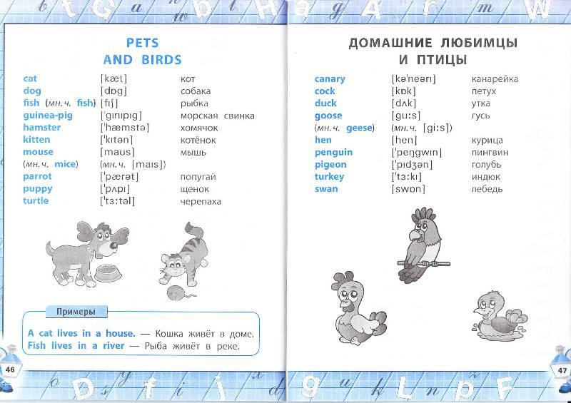 Английский алфавит с транскрипцией и русским произношением ...