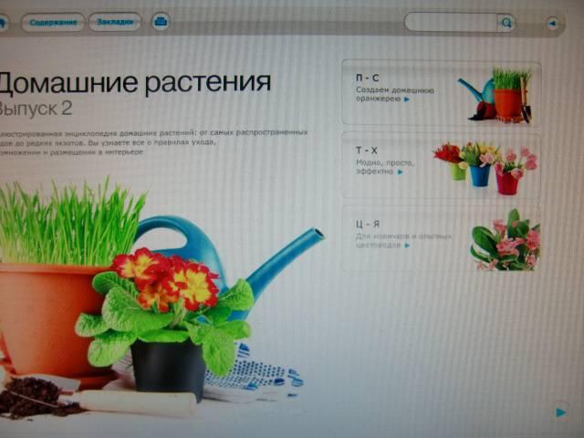 Иллюстрация 1 из 9 для Домашние растения. Выпуск 2 (CDpc) | Лабиринт - софт. Источник: Лимпи