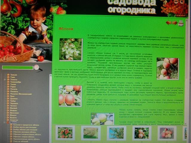 Иллюстрация 1 из 6 для Универсальный справочник садовода и огородника (CDpc) | Лабиринт - софт. Источник: Лимпи