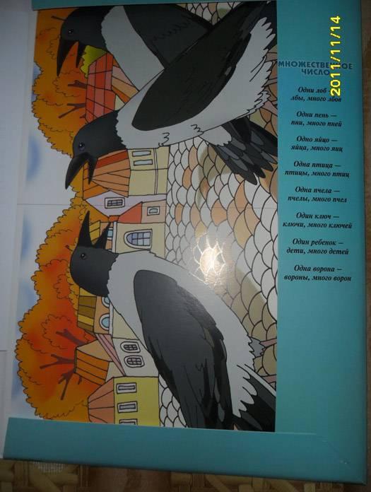 Иллюстрация 1 из 10 для Грамматика в картинках: Множественное число. 5-7 лет - А. Бывшева | Лабиринт - книги. Источник: mogitatiana