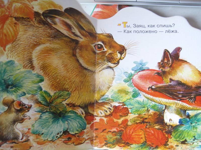 Иллюстрация 1 из 7 для Кто как спит - Николай Сладков | Лабиринт - книги. Источник: Домовушка