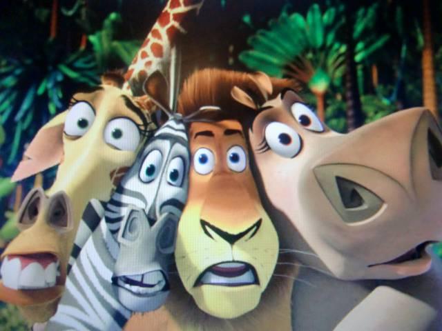 Иллюстрация 1 из 9 для Мадагаскар (DVD) - Дарнелл, Макграф | Лабиринт - видео. Источник: Лимпи