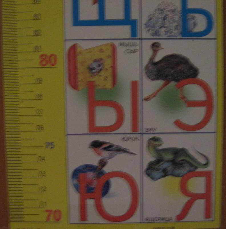Иллюстрация 1 из 3 для Ростомер: Азбука 15х100см (блок 25шт) | Лабиринт - игрушки. Источник: Зеленоглазая