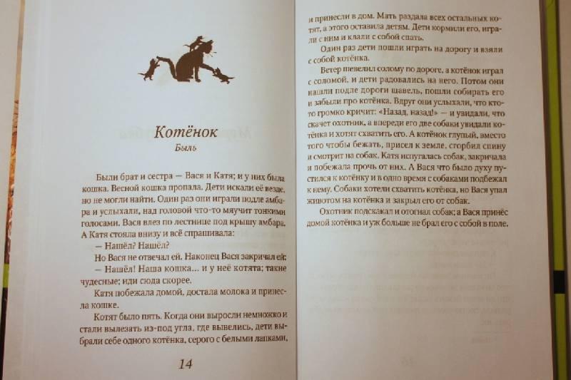 Он перерабатывает отдельные произведения «азбуки», конструктивно перестраивает ее и выпускает под названием - «новая азбука» - книги для чтения.лев смотрел на собачку, поворачивал голову со стороны на сторону и не трогал её.