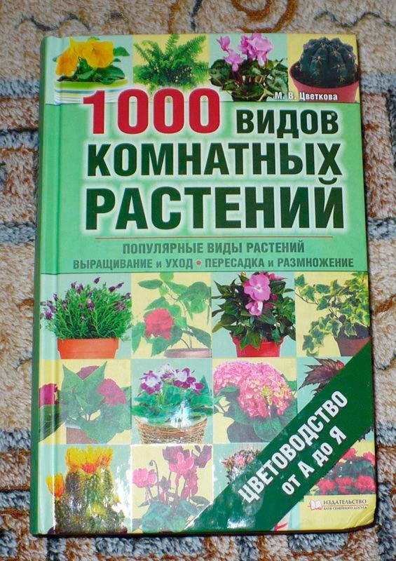 Иллюстрация 1 из 10 для 1000 видов комнатных растений. Цветоводство от А до Я - Мария Цветкова | Лабиринт - книги. Источник: Kat_rina
