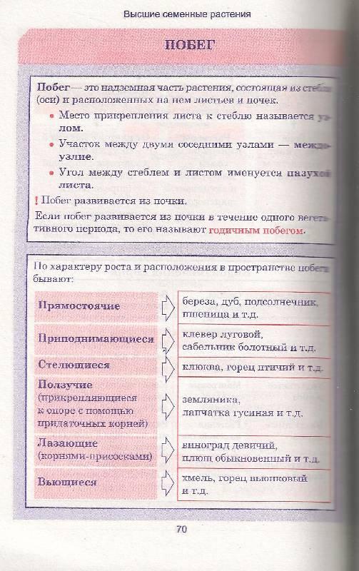 Иллюстрация 41 из 42 для Биология. Весь школьный курс в таблицах | Лабиринт - книги. Источник: Sheks
