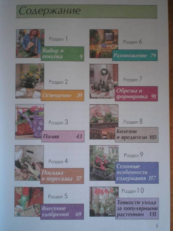 Иллюстрация 1 из 3 для 100 золотых правил. Уход за комнатными растениями - М. Смирнова | Лабиринт - книги. Источник: Тарасенко  Екатерина Сергеевна