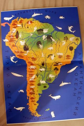 Иллюстрация 1 из 3 для В мире животных: Южная Америка - Игорь Куберский | Лабиринт - книги. Источник: Клевлеева  Ирина Владимировна