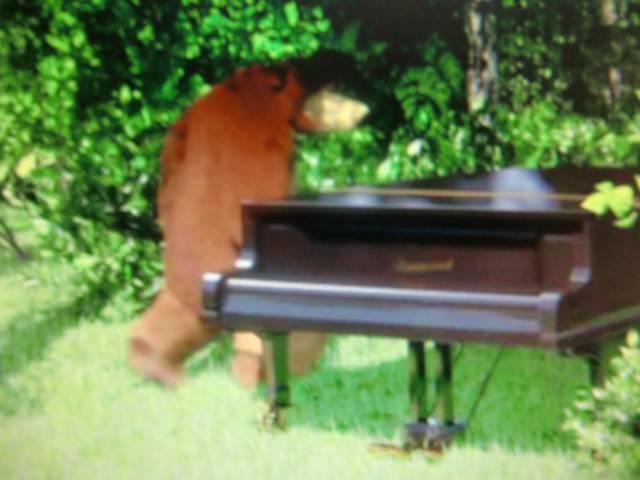 Иллюстрация 1 из 13 для Маша и медведь. Репетиция оркестра (DVD)   Лабиринт - видео. Источник: Лимпи