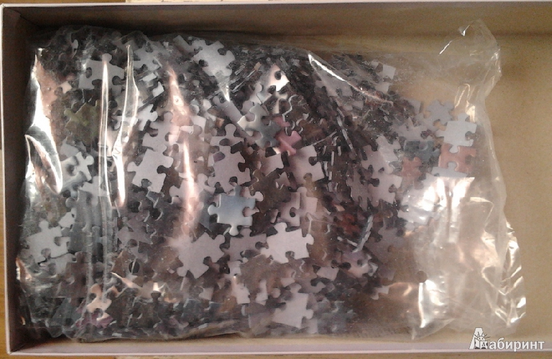 """Иллюстрация 1 из 5 для Puzzle-1000 """"Отражение"""" Delon (29379)   Лабиринт - игрушки. Источник: Lynne"""