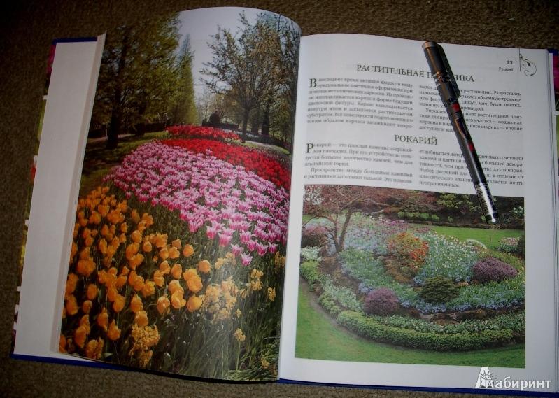 Иллюстрация 1 из 4 для Цветники и клумбы. Комплект (книга + 2 пакета семян цветов) - Анастасия Скворцова | Лабиринт - книги. Источник: О.  Катерина