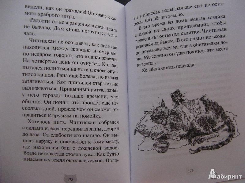 Тамара крюкова кот на счастье читать