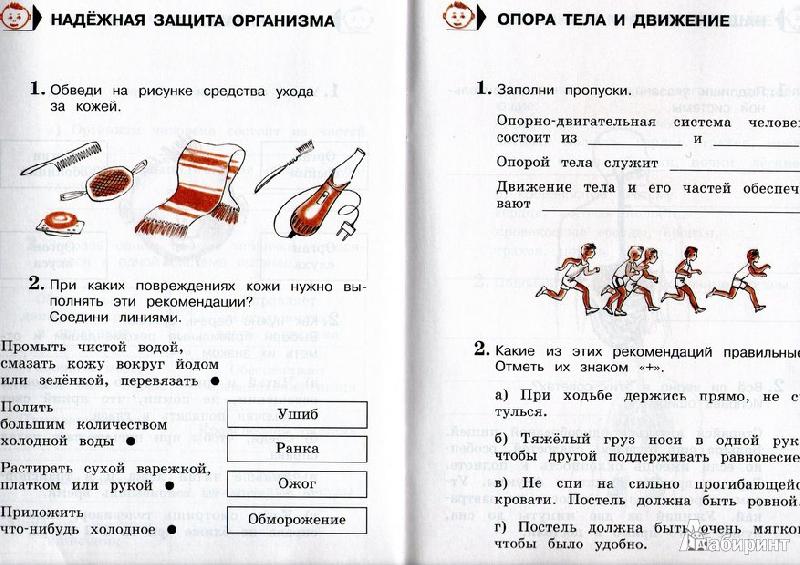 Тесты По Окружающему Миру 4 Класс Плешаков Ответы