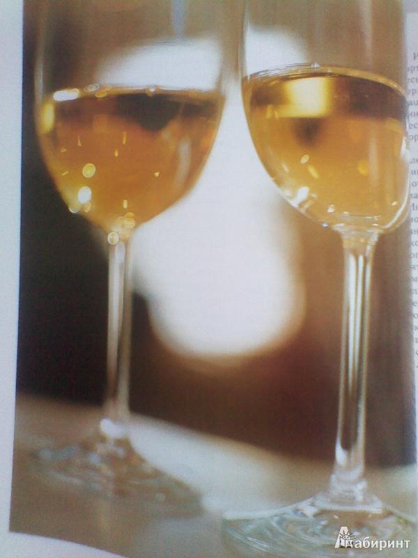 Иллюстрация 1 из 6 для Искусство дегустации вина - Спенс Годфри | Лабиринт - книги. Источник: sontana