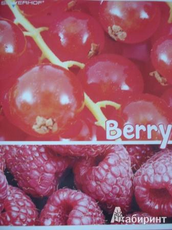 """Иллюстрация 1 из 3 для Тетрадь """"Berry"""" 48 листа, клетка, А5 (811202-55)   Лабиринт - канцтовы. Источник: Светлячок*"""