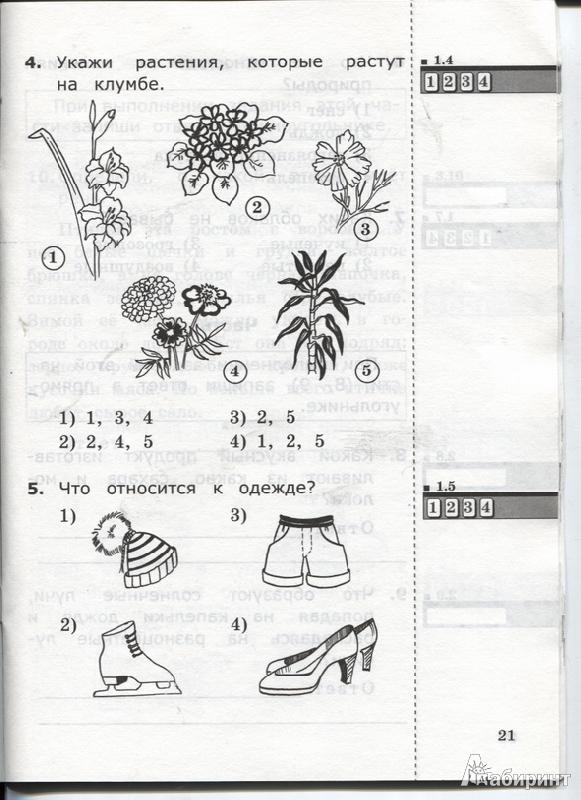 днем рождения тест по экологии для младших классов штрафстоянке