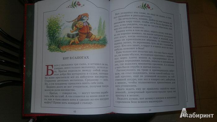 Иллюстрация 1 из 3 для Кот в сапогах - Шарль Перро | Лабиринт - книги. Источник: Дегальцева  Диана