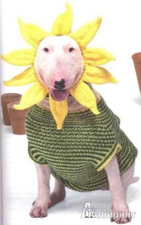 иллюстрация 7 из 7 для вязаная одежда для собак модные комплекты