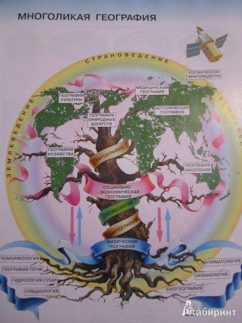 Иллюстрация 1 из 9 для Атлас. Начальный курс географии. 6 класс. ФГОС - Душина, Летягин | Лабиринт - книги. Источник: Алена
