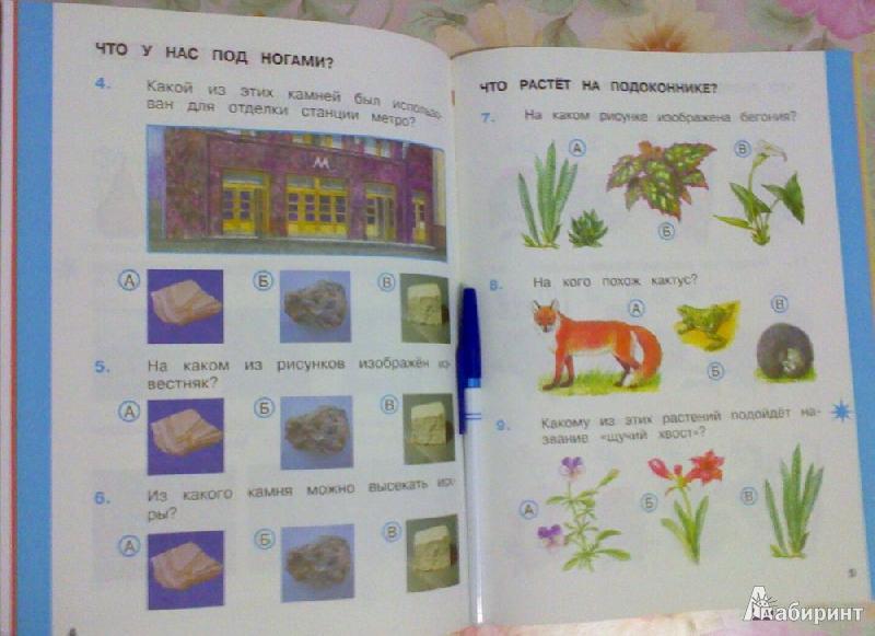 Окружающий мир 1 класс 2 часть ответы учебник.