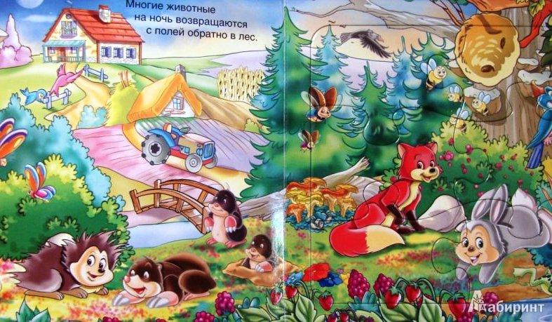Иллюстрация 1 из 6 для Волшебный лес. Кто живет в лесу?   Лабиринт - книги. Источник: ОксанаШ