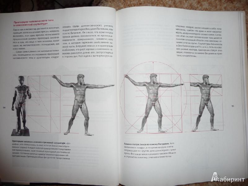 Геометрия дизайна пропорции