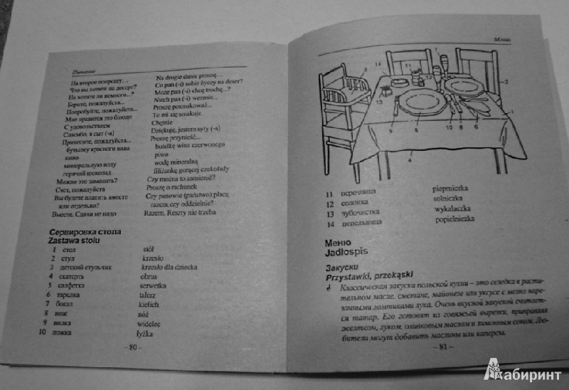 Иллюстрация 1 из 6 для Русско-польский разговорник - Татьяна Андрейченко | Лабиринт - книги. Источник: Наталия  Владимировна