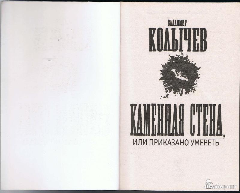 Иллюстрация 1 из 11 для Каменная стена - Владимир Колычев | Лабиринт - книги. Источник: Цветкова  Марина