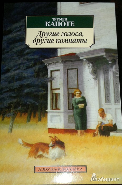 Иллюстрация 1 из 12 для Другие голоса, другие комнаты - Трумен Капоте   Лабиринт - книги. Источник: Леонид Сергеев