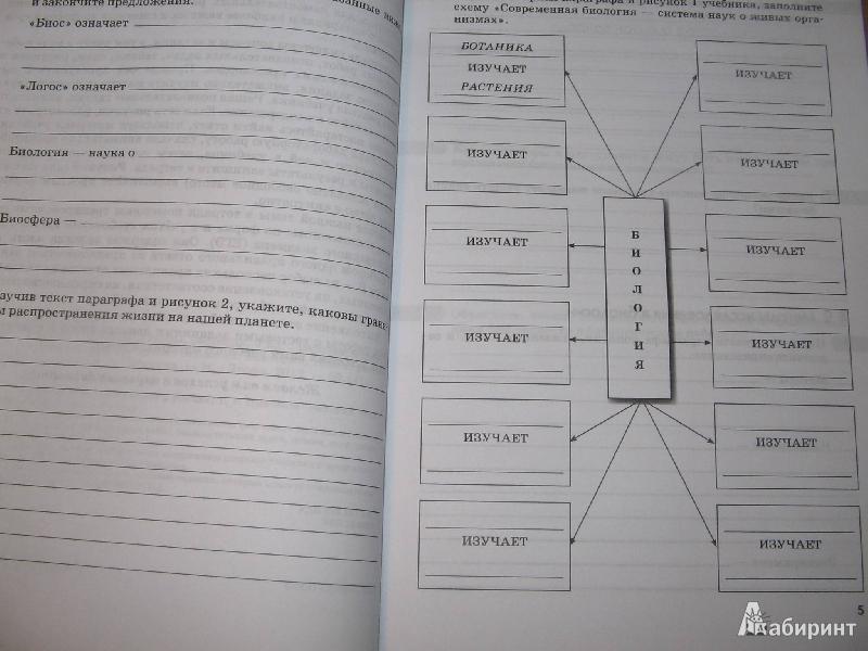 Рабочия тетрадь по биологии 6 класс кроссворды