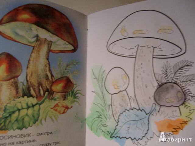грибов сказки про знакомство