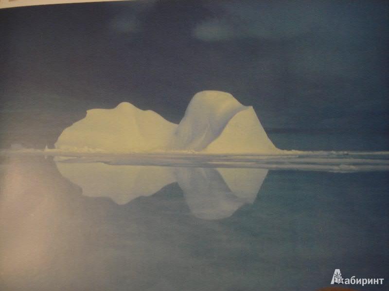 Иллюстрация 1 из 11 для Мир в картинках. Арктика и Антарктика. 3-7лет. | Лабиринт - книги. Источник: Lubochka
