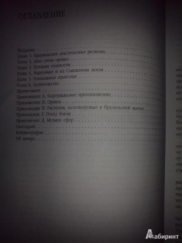 Иллюстрация 1 из 17 для Магия Бразилии. Рецепты, заклинания и ритуалы - Морвин | Лабиринт - книги. Источник: Юлия