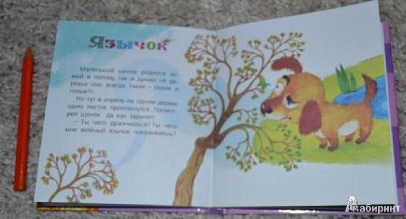 Иллюстрация 1 из 16 для Маленькие сказки - Геннадий Цыферов | Лабиринт - книги. Источник: *  Наталья