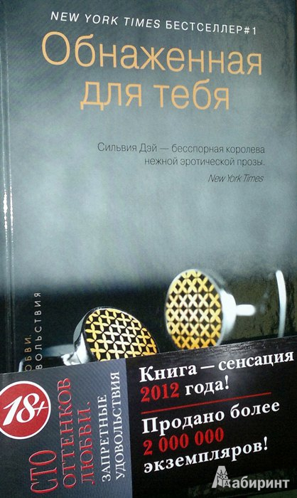 Обнаженная для тебя читать онлайн  Сильвия Дэй  Knizhnikorg