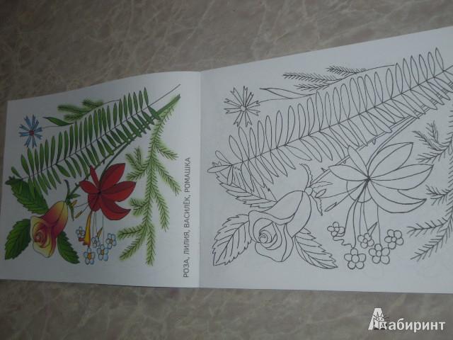 Иллюстрация 1 из 3 для Изучаем и раскрашиваем. Летние букеты   Лабиринт - книги. Источник: Iwolga
