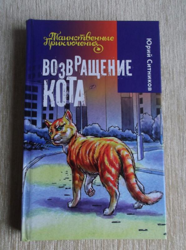 картинки возвращение кота